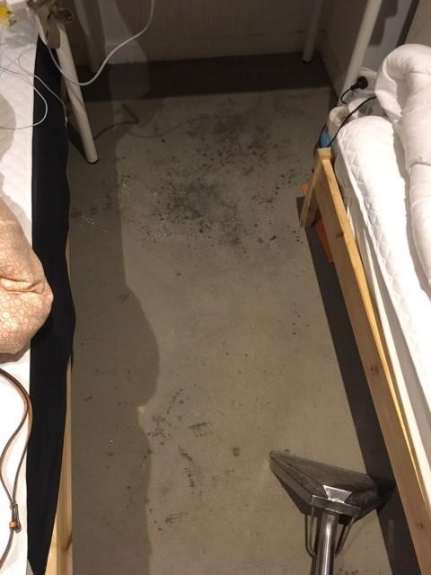Carpet Before.jpg